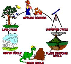 Science Curriculum Elementary   Integrating Science, Math, and Technology (K-6) (I.Science MaTe)  A complete science program for every week of a child's K-6 experience.  Includes 3 lesson plans for 34 weeks.  Includes all science subjects weaved through Applied Science, Universe Cycle, Plate Tectonic Cycle, Rock Cycle, Water Cycle, and Life Cycle.