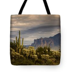 """After The Rain at the Superstitions  Tote Bag 18"""" x 18"""" by Saija  Lehtonen"""