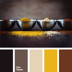 Dark golden yellow and chocolate colors combined with gray-beige and black. This scheme is well-suited for a man's wardrobe - casual, sports or business -.