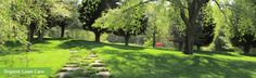 In the home- and business owner's quest for the perfect green lawn, we can do some pretty terrible things to the soil, water, and the environment. Creating beautiful expanses of …
