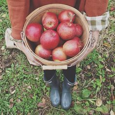 Explore a local farm and go apple picking! Going somewhere different can spice things up for any day date. ;)) #MorningsWithMoll