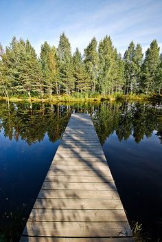 Beautiful Finnish lake and forest