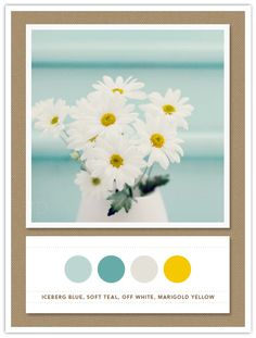 Iceberg Blue, Soft Teal, Off White, Marigold Yellow - stunning colour combination (I even like the brown background)