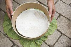 DIY stepping stones with rhubarb leaf.