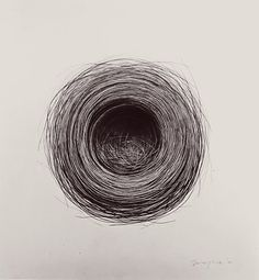Beautiful charcoal drawing by Jonathan Delafield Cook — Birds Nest, 1998