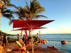 海と一体化して見えるインフィニティー・エッジ・プール Sheraton Waikiki, Hawaii, Patio, Outdoor Decor, Pictures, Photos, Hawaiian Islands, Grimm, Terrace