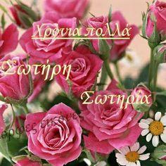 Ευχες Name Day, Birthdays, Names, Rose, Flowers, Plants, Greek, Anniversaries, Pink