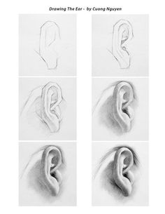 Pencil Drawing Ear Pictures Sample Pictures How to draw ear with pencil drawing techniques … Pencil Art Drawings, Realistic Drawings, Art Drawings Sketches, Drawing Faces, How To Draw Realistic, Male Drawing, Shading Drawing, Body Drawing, Drawing Artist