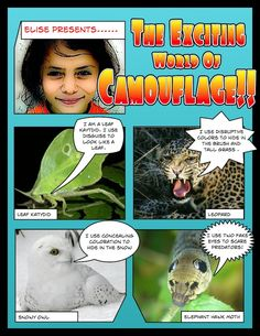 Animal Camouflage Comic | K-5 Computer Lab Technology Lessons
