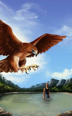 Swoop by NicoleCadet on DeviantArt Bald Eagle, Cover Art, Fantasy Art, My Arts, Photoshop, Sketches, Illustrations, Deviantart, Gallery