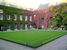 Autumn Ivy in Front Quad, Lincoln College