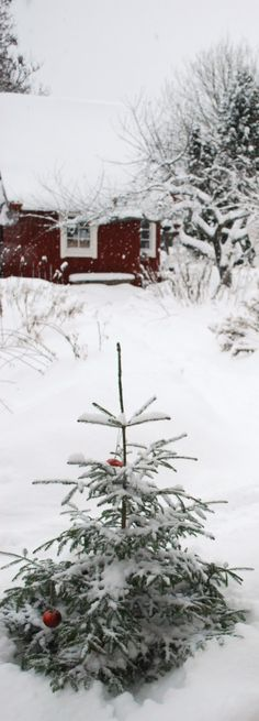 Christmas is the most important annual holiday in Finland. Christmas Eve, Christmas Day and Boxing Day are all public holidays in Finland. Travellers to Finland are sometimes surprised at how quiet most cities become during Christmas, as the holiday is usually spent at home with family.