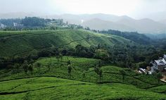 Plan your Kerala tour with Accredited Kerala Tour Operator