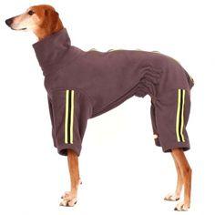 sofa dog wear for the dog pinterest dog wear and dog rh pinterest com sofa dog wear string sofa dog wear string