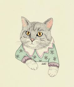 "indimaverick: ""Cute fancy cat """