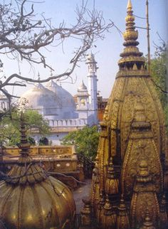 SRI KASHI VISHWA NATH TEMPLE Lord Shiva is worshipped for peace and happiness for the humanity