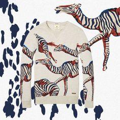 We love animal prints!⭐❤️Deze super leuke sweater is van en vind je nu in onze shop! Scotch Shrunk, Summer Kids, Boy Fashion, Must Haves, Crop Tops, Animal Prints, Boys, Sweaters, Van