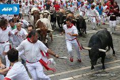 Running of the bulls - Pamplona