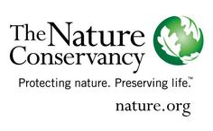 Do you want to donate your money to a reputable, and effective, wildlife conservation organization? Here's our list of the 10 best, ranging from the World Wildlife Fund to the National Audubon Society.: The Nature Conservancy