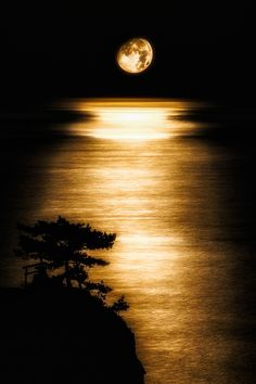 Moon and Sea by Bonjour on PHOTOHITO