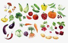 水彩野菜, 水彩, 野菜, カラーPNG画像