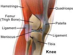 arthritis knee pain remedies, kinds of treatments and ways to minimize knee pain or treatment towards knee arthritis Knee Ligaments, Knee Meniscus, Knee Osteoarthritis, Prevent Arthritis, Knee Arthritis, Arthritis Relief, Arthritis Remedies, Rheumatoid Arthritis, Arthritis
