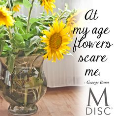 www.mdisc.com