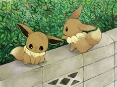 Kawaii baby Eevees.~ qwq I hope they don't fall.