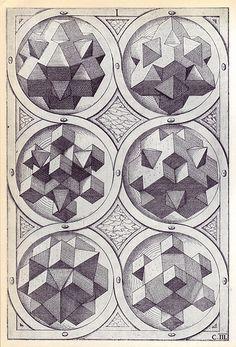 Terra (c) - Perspectiva Corporum Regularium - Wenzel Jamnitzer 1568 by peacay… Solid Geometry, Geometry Art, Sacred Geometry, Sketch Manga, Motifs Textiles, Platonic Solid, Occult, Geometric Shapes, Illustration Art
