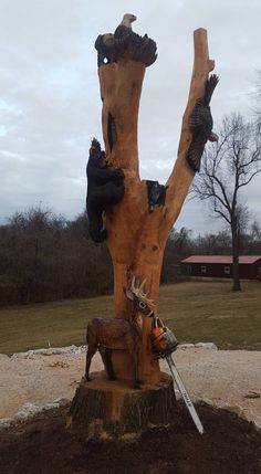 8 best eagle ridge chainsaw carving media & special events images