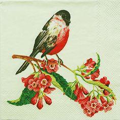 ペーパーナプキン(25)IHR:(5枚)SONG BIRD(クリーム)-IH27(25)