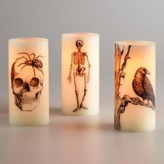 Made from real wax, our realistic-looking heat-free candles are each printed with a spooky bug, skeleton or raven design. Showcase them on your tabletop or mantel to create an eerie ambience for your fright night get-together. Halloween Fonts, Halloween Items, Holidays Halloween, Halloween Crafts, Halloween Lanterns, Scary Halloween Decorations, Creepy Halloween, Halloween Vampire, Halloween Desserts