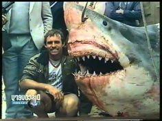 Ataques de Tiburones : Documental - Videos