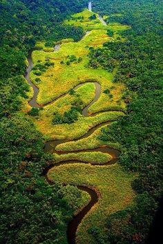 The meandering River Congo, Democratic Republic of the Congo.