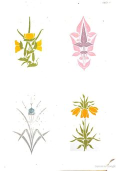 A series of sketches from nature of plant-form 1868