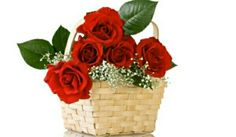 Thinking of flower delivery to Hyderabad city, Send same day delivery of flowers in Hyderabad. Operated by Maya florist - A perfect flower delivery network in town. Rose Images, Flower Images, Hd Images, Beautiful Bouquet Of Flowers, Pretty Flowers, Avas Flowers, Cheap Flowers, Amazing Flowers, Red Flowers