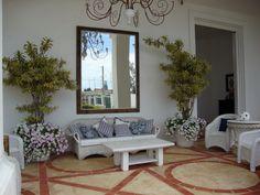 Jardim na praia tem varanda co flores -petunias, veja mais no meu Blog jardim de Helena