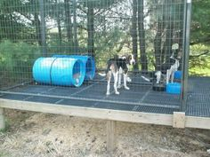UKC Forums - Above ground kennel plans or ideas