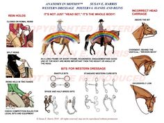 Western dressage hands & headcarriage