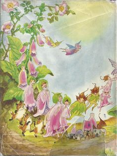 Enid Blyton Foxglove Story Book | eBay