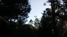 11. Nubes artificiais   ☁ Nubes creadas  por avións. ☁