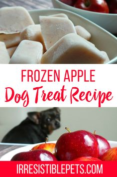 I'm excited to share this frozen apple dog treat recipe with you. Apples are good for dogs so this homemade dog treat recipe is healthy and simple to make. Puppy Treats, Diy Dog Treats, Homemade Dog Treats, Healthy Dog Treats, Dog Biscuit Recipes, Dog Food Recipes, Kfc Biscuit, Frozen Pumpkin, Frozen Apple