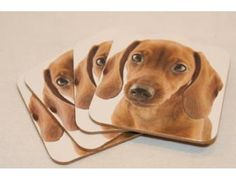 Dachshund Drink Coasters Set of Four Photo / Realistic are up for bid during the Furever Dachshund rescue online auction going on right now til Nov 26th! Something for everyone!
