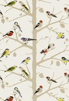 sarah's house powder room bird wallpaper: Schumacher's A-Twitter  Frame a piece as art?