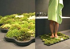 Moss Shower Mat that lives off the water that falls after you get out of the shower and feels great on the feet!