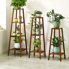 (With Garden Tools) Plant Stand Shelf Indoor 6 Tier Tiered Wood Plant Flower Pots Shelves Rack Holder Stand Indoor Outdoor for Multiple Plants Garden Balcony Patio Living Room Tall Plant Stands, Diy Plant Stand, Tall Plant Stand Indoor, Stand Tall, Wooden Plant Stands Indoor, Modern Plant Stand, Tall Plants, Hanging Plants, Hanging Baskets