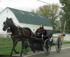 Ohio Amish Country - Christine B. © 2011