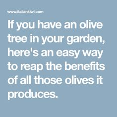 If you have an olive tree in your garden, here's an easy way to reap the benefits of all those olives it produces. Reap The Benefits, Olive Tree, Kiwi, Food Print, Fun Facts, The Cure, Garden, Easy, Olives