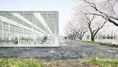 ishigami instituto de japon - Buscar con Google