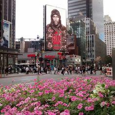 #newyork #newyorkcity #ny #nyc #urban #metropolis #bigapple #manhattan #architecture #city #arquitectura #archilovers #architecturelovers #bigcity #cities #architexture #architect #citylife #cityscape #urbanfurniture #metropolitan #metro #town #megacity #downtown #ciudad #street #billboard #flowers #buildings